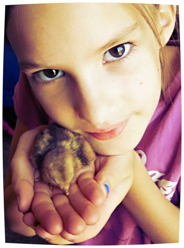 Audrey, holding a baby pheasant at my Uncle Peter and Aunt Candy's home, outside of Hudson, Illinois.  July 2014.