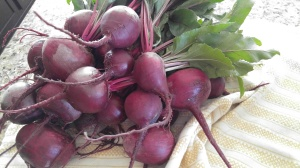 Beets are beautiful.